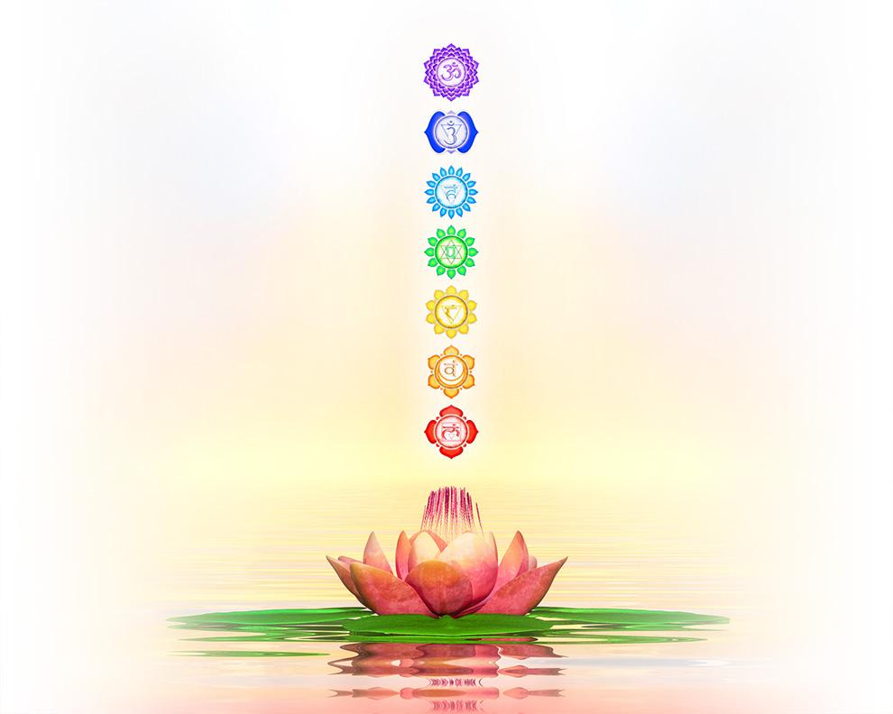 Die 7 Chakrasymbole über einer Lotusblume